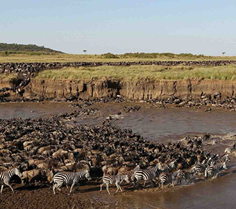 nws-st-tanzania-wildebeest-migration-river-crossing-2