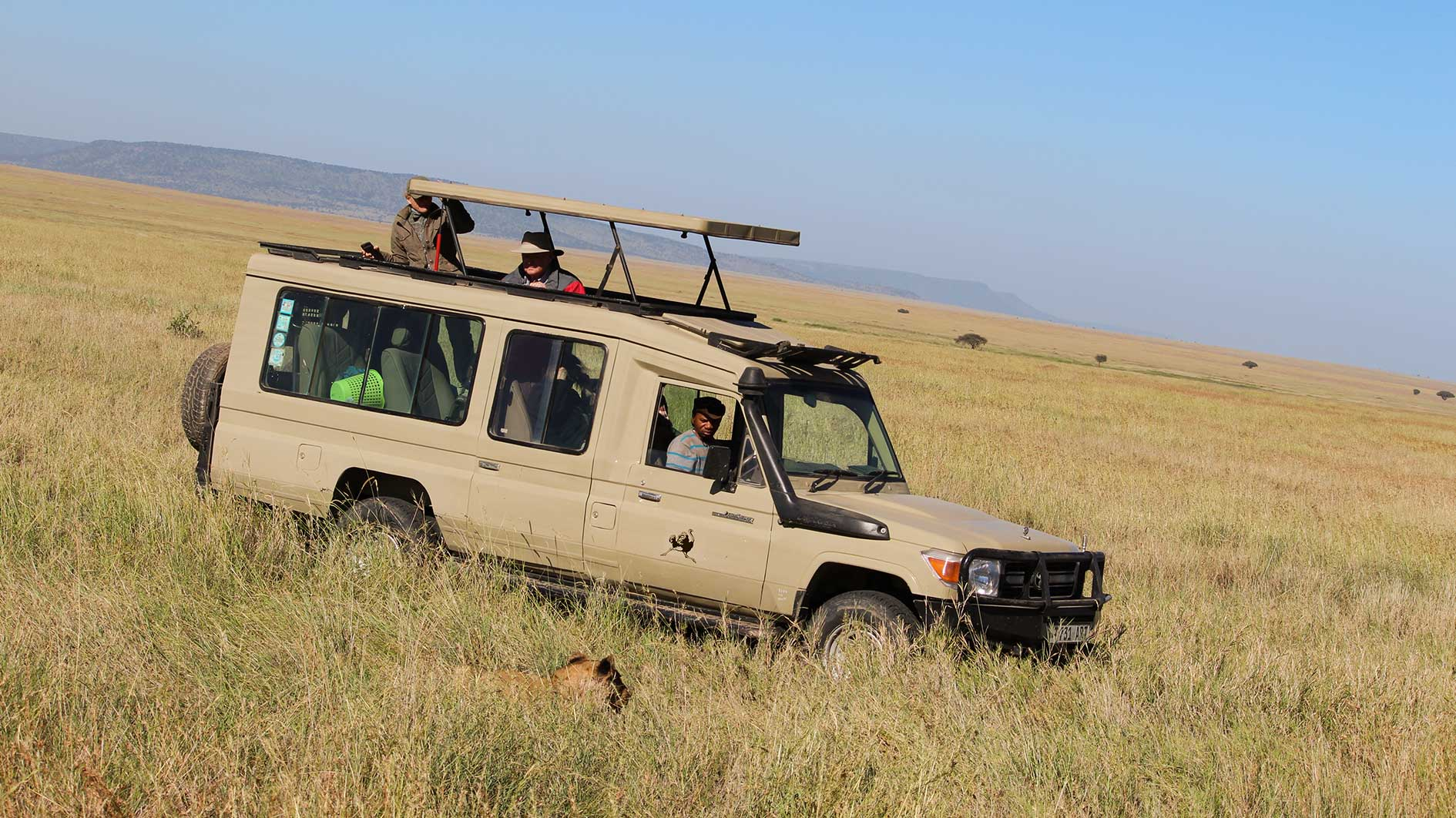 Tanzania Safari Tour Guiding